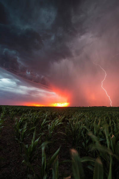 Wall Art - Photograph - Huron Lightning  by Aaron J Groen