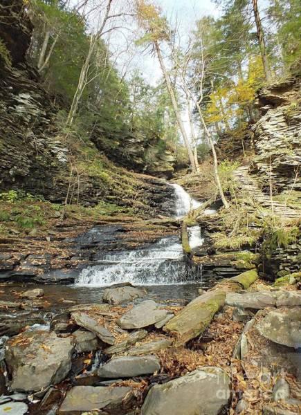 Sullivan County Photograph - Huron - Ricketts Glen by Cindy Treger