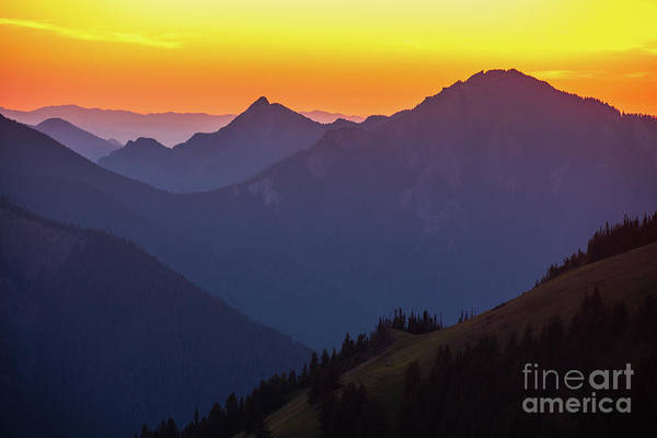 Wall Art - Photograph - Hurricane Ridge Sunset Layers by Mike Reid