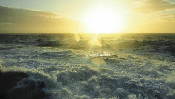 Photograph - Hurricane Sandy Golden Sunrise 16x9 Crop by Ian Johnson