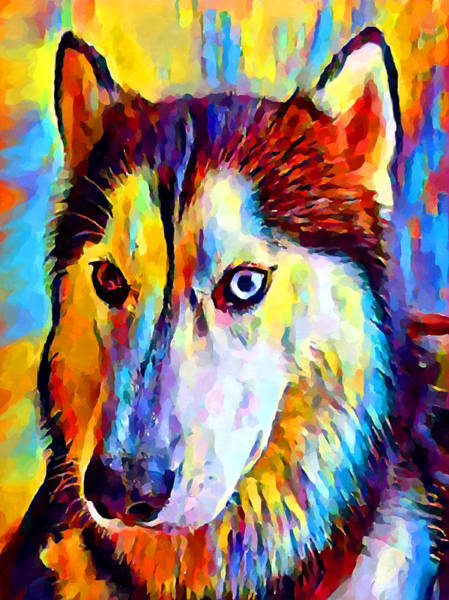 Wall Art - Painting - Husky 2 by Chris Butler