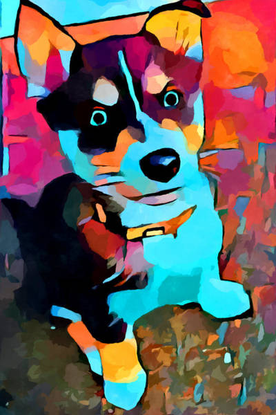 Wall Art - Painting - Husky 3 by Chris Butler