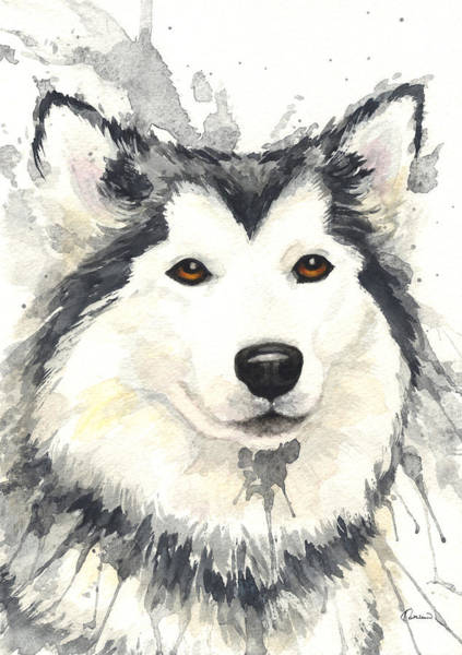 Wall Art - Painting - Husky by Kathleen Wong