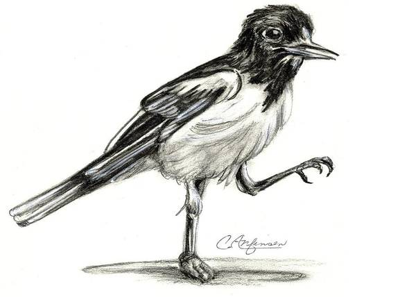 Oriole Drawing - Hut Two Three Four by Carol Allen Anfinsen
