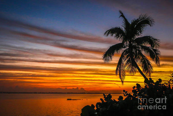 Art Print featuring the photograph Hutchinson Island Sunrise #1 by Tom Claud