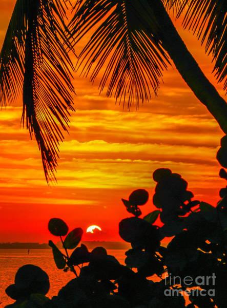 Photograph - Hutchinson Island Sunrise #2 by Tom Claud