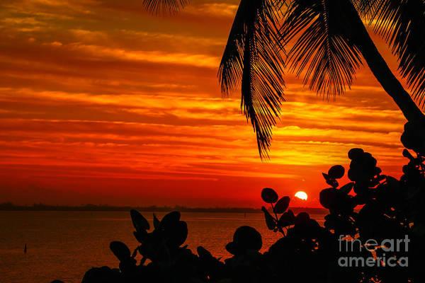Photograph - Hutchinson Island Sunrise #3 by Tom Claud