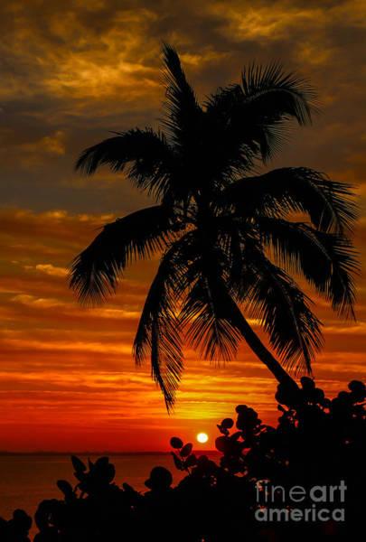 Photograph - Hutchinson Island Sunrise #4 by Tom Claud