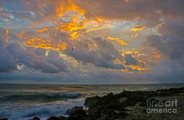 Photograph - Hutchinson Island Sunrise by Tom Claud