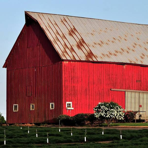 Photograph - Hwy 47 Red Barn 21x21 by Jerry Sodorff