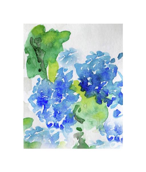 Hydranga Art Print
