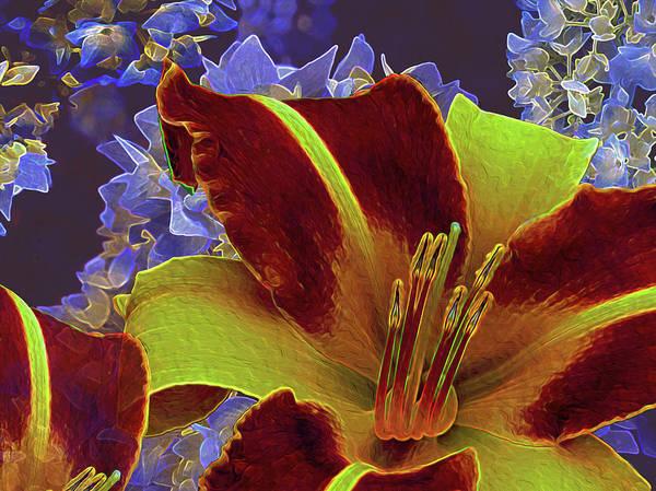 Photograph - Hydrangea And Lilies by Lynda Lehmann