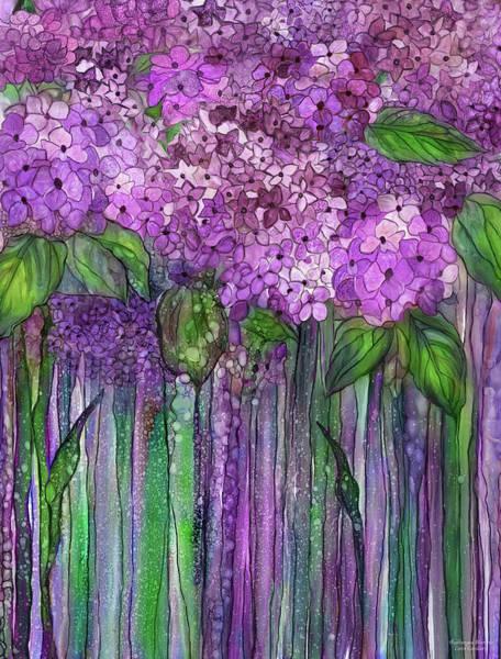 Mixed Media - Hydrangea Bloomies 1 - Pink by Carol Cavalaris