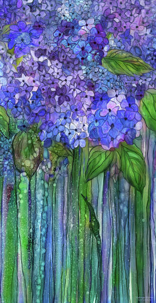 Mixed Media - Hydrangea Bloomies 2 - Blue by Carol Cavalaris