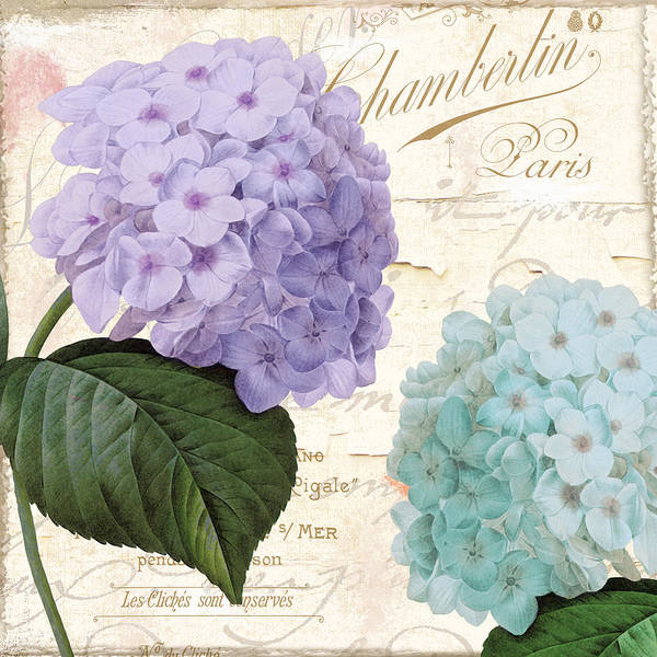 Hydrangea Hortensia Art Print