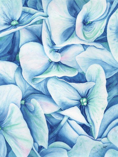 Painting - Hydrangea by Lori Taylor