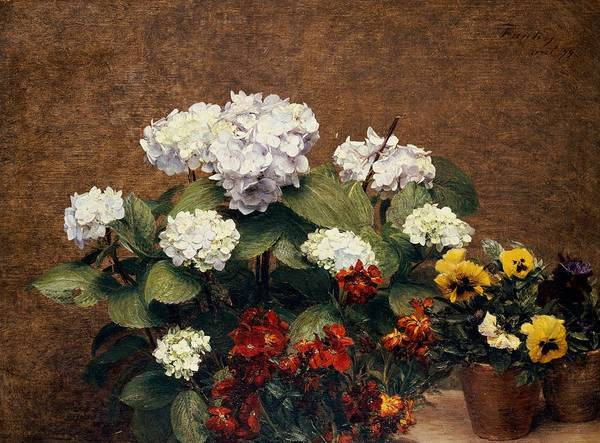 Wall Art - Painting - Hydrangeas And Wallflowers And Two Pots Of Pansies by Henri Jean Fantin-Latour