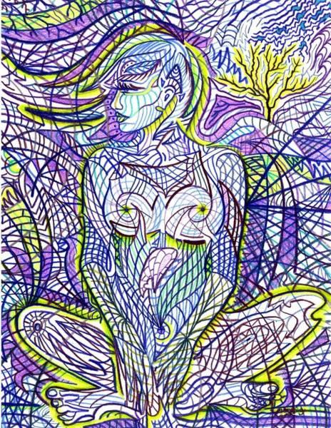 Drawing - Hyla by Danielle R T Haney
