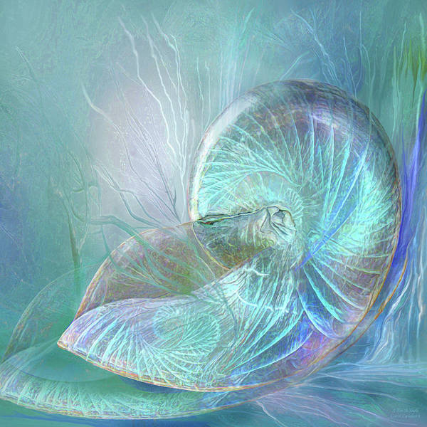 Mixed Media - I Am A Shell by Carol Cavalaris