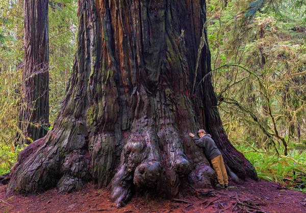 Photograph - I Am A Tree Hugger by Loree Johnson