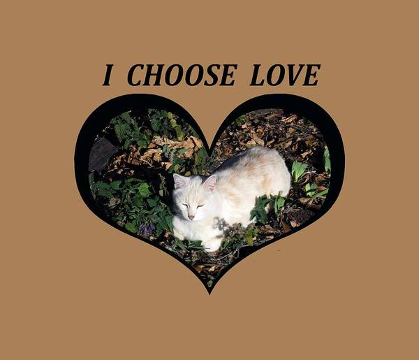 I Chose Love With A Cat Enjoying Catnip In A Garden Art Print