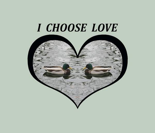 I Choose Love With A Pair Of  Mallard Ducks Framed In A Heart Art Print