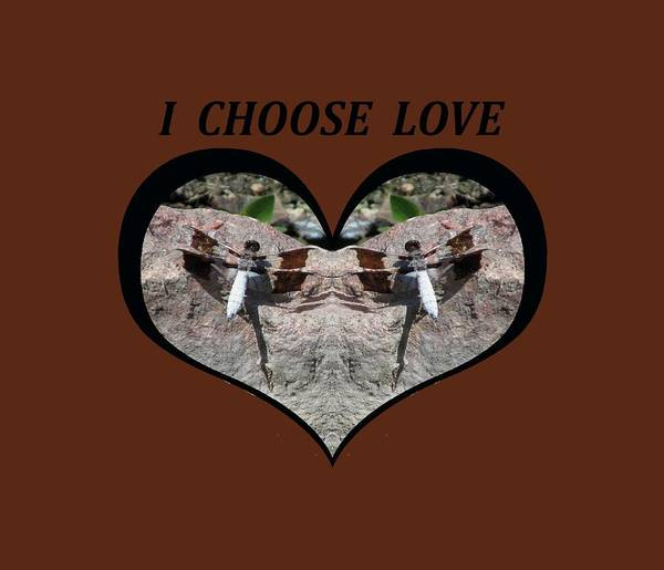 I Chose Love With Dragonflies On A Rock Art Print
