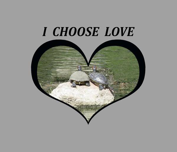 I Chose Love With Two Turtles Snuggling Art Print
