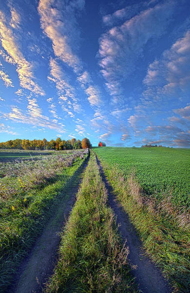 Photograph - I Doubted That I Would Ever Come Back by Phil Koch