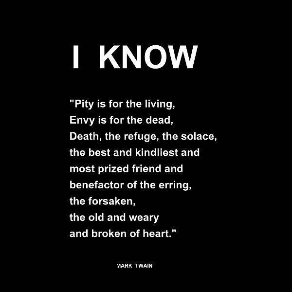 Digital Art - I Know - Mark Twain Nfs by VIVA Anderson
