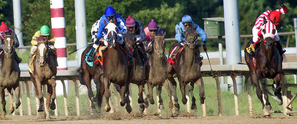 Racetrack Photograph - I Know You Can Do This by Betsy Knapp