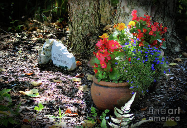 Photograph - I Love My Garden by Karen Adams