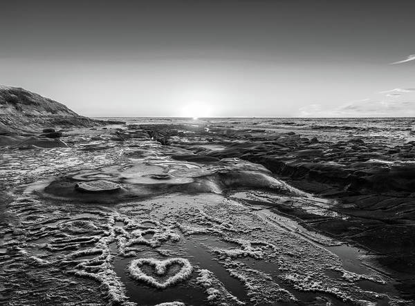 Photograph - I Love You As Big As The Ocean Too   False Infrared by Scott Campbell