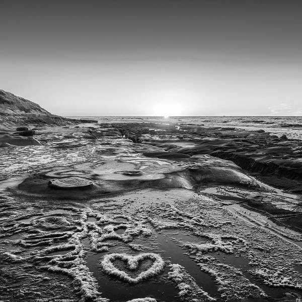Photograph - I Love You As Big As The Ocean Too   False Infrared   Square by Scott Campbell