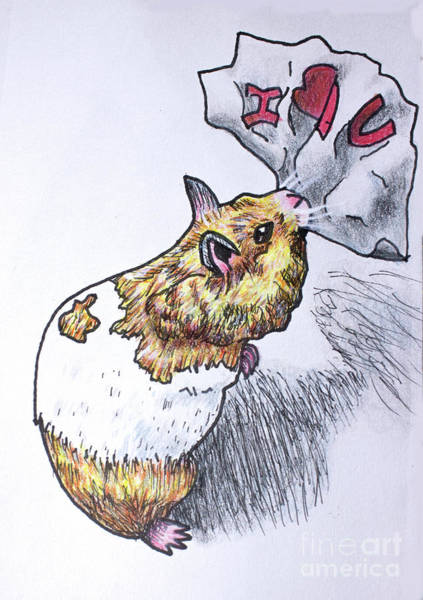 Hamster Drawing - I Love You Valentine by Cecille Gagne