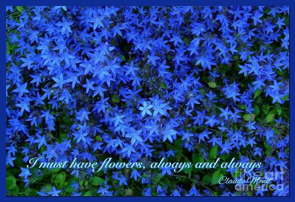 Claude Monet Photograph - I Must Have Starflowers by Joan-Violet Stretch