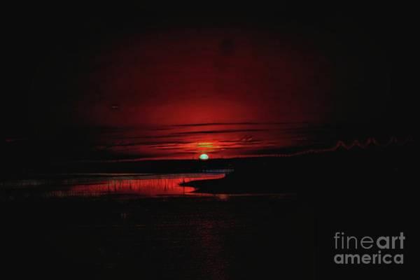 Photograph - I Rise Up by Diana Mary Sharpton