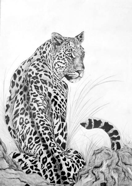 Singh Drawing - I See Dinner by Vikramaditya Singh