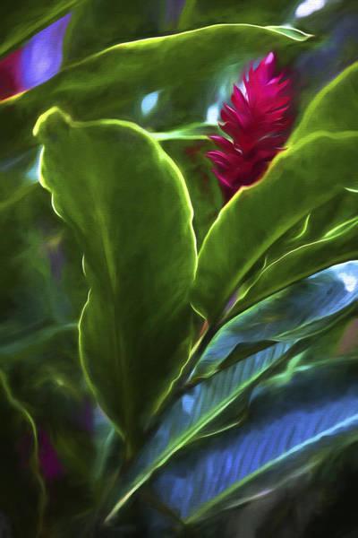 Digital Art - I See You II by Jon Glaser