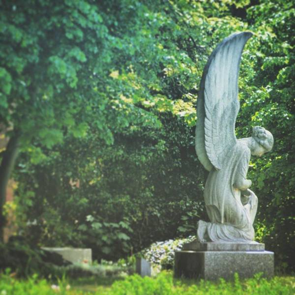 Salvation Wall Art - Photograph - I Sit And Wait... Does An #angel by Rune Kristian B