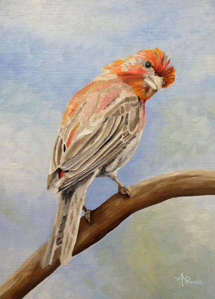 House Finch Wall Art - Painting - I Spy With My Little Eye - Male House Finch by Angeles M Pomata