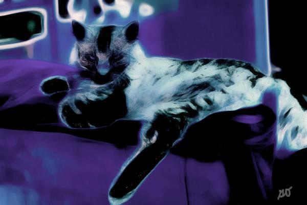 Photograph - I Was Sleeping by Gina O'Brien