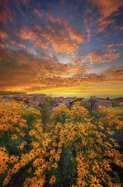 Photograph - I Will Be Here When The Morning Comes by Phil Koch