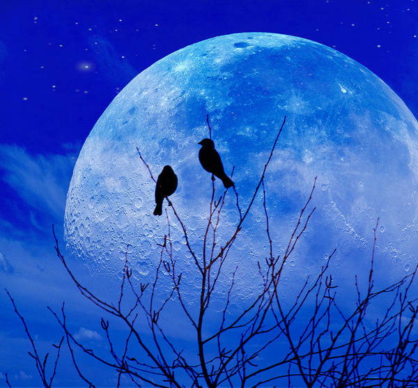 I Would Give You The Moon Art Print
