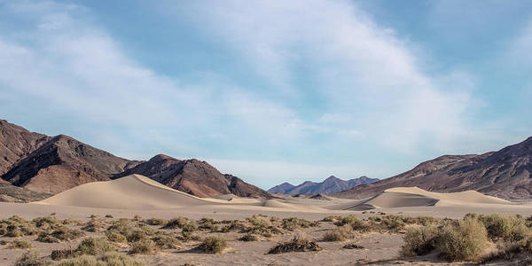 Death Valley Photograph - Ibex Dune Vallley by Peter Tellone