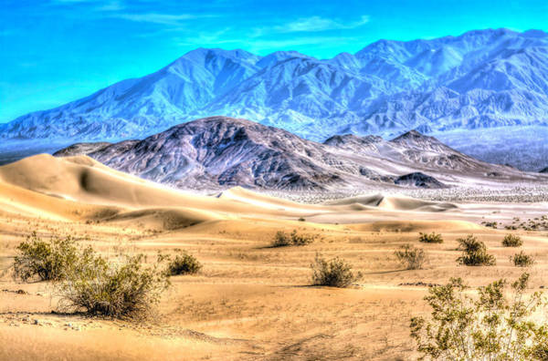 Photograph - Ibex Sands by Don Mercer