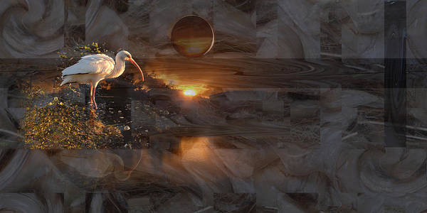 Digital Art - Ibis At Sunset - Abstract by rd Erickson
