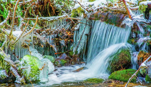 Photograph - Ice Along The Creek by Jason Brooks