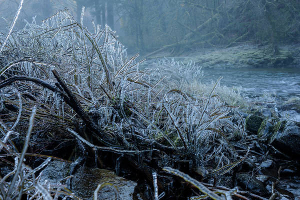 Photograph - Ice Along Youngs River by Robert Potts