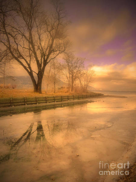 Photograph - Ice And Light by Tara Turner